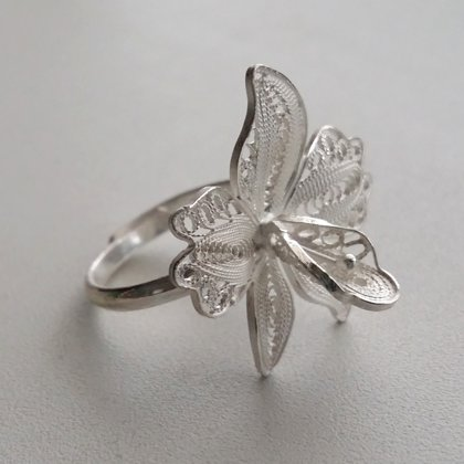 Filigree Ring Orchid