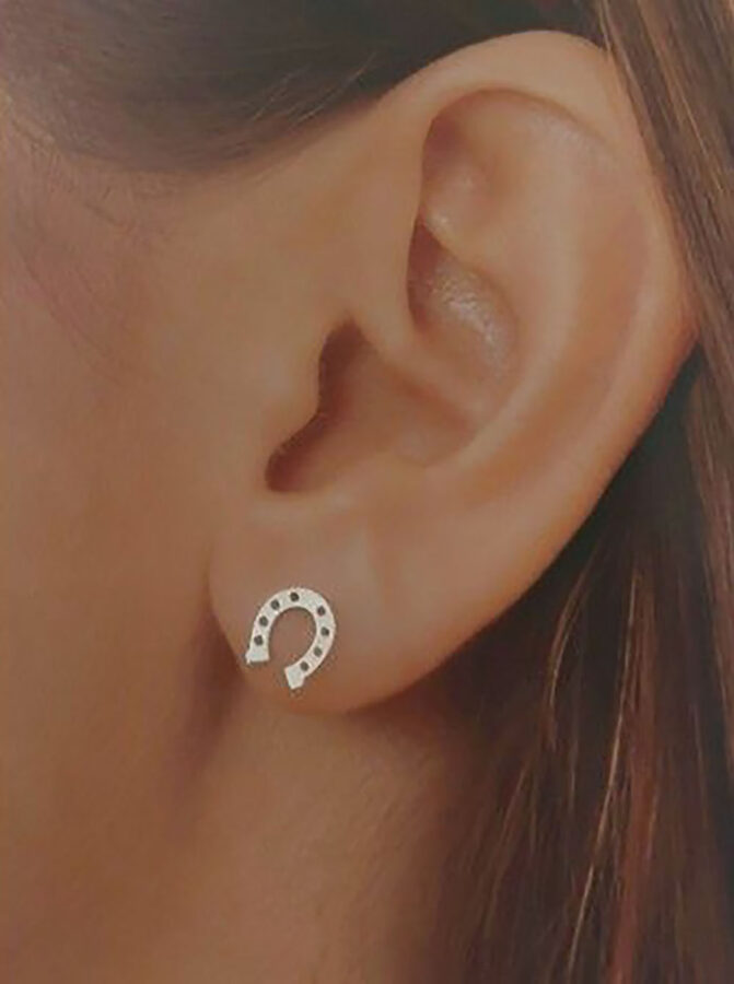 Silver Horseshoe Earrings Herradura