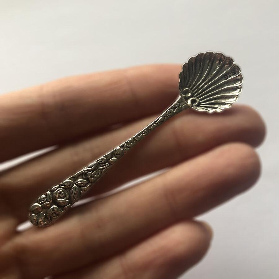 Silver Spoon La Concha